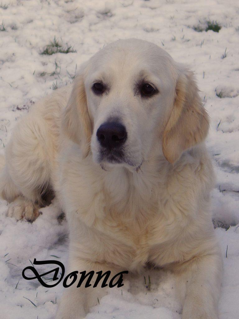 Donna-1-768x1024
